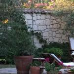 Tas Otel garden