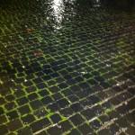 Ponte Sisto at night